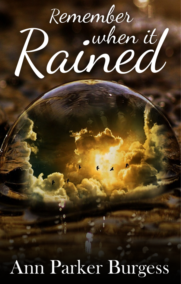 Book Cover: Remember When It Rained<sup>*</sup>
